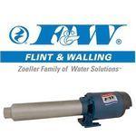 Flint & Walling pump