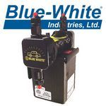 Blue-White Pumps